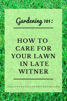 Easy Tips For Lawn Care After Winter Gardening Tips For Early Spring - Winter Garden