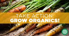 Simple petition :-) PLs sign♥ http://action.ewg.org/p/dia/action3/common/public/?action_KEY=2202&tag=201604OrganicsEmail #KnowledgeIsPower!#AwesomeTeam♥#Odycy☮:-)