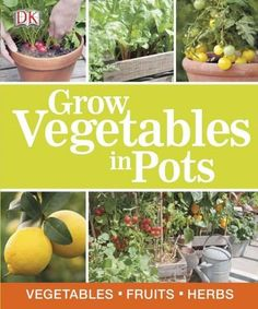 Packed full of beautiful photography and helpful hints and tips, Grow Vegetables…