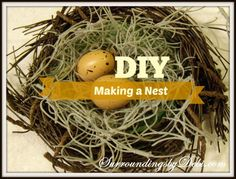 Making a Nest! - Surroundings by Debi