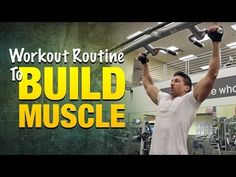 Workout Routine To Build Muscle: Build Bigger Arms, Legs, And Back Muscles With This Workout Plan
