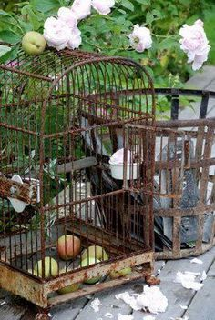What is Brocante & Why is it Popular? - Vintage American Home Antique Bird Cages, Rusty Garden, The Caged Bird Sings, Rust In Peace, Vintage Birds, Bird Feathers, Beautiful Birds, Bird Houses, Old Things