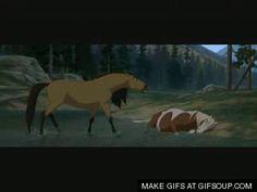 Spirit Horse Movie, Spirit The Horse, Spirit And Rain, Dreamworks Animation, Disney And Dreamworks, Spirit Drawing, Disney Horses, Rain Gif, Horse Movies