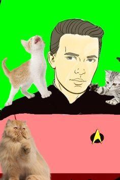 Twitter / PandaHatBear: @wilw with some feline friends ...