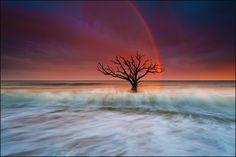 Magic Rainbow Over Edisto Island.   More pictures: http://igorlaptev.com