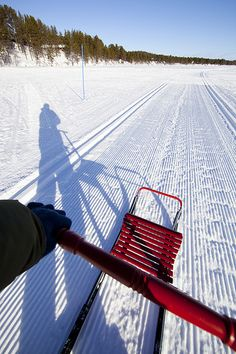 Kick sledding in Kilpisjärvi, Finland