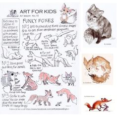 Funky foxes 🦊