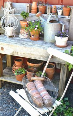 Terracotta pots, pansies and johnny jump ups