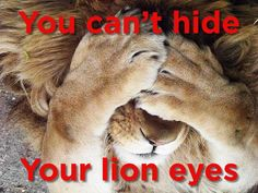 """""""You can't hide your lyin' eyes..."""""""