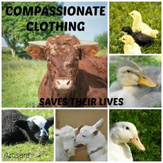 Compassionate clothing... Artisara. Make a difference and help us share the passion for compassionate clothing! http://www.artisara.com