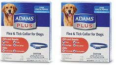 Dog Flea Collars - 2 Pack Flea  Tick Collar for Dogs Size Large * For more information, visit image link. (This is an Amazon affiliate link)