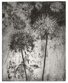 Kurt Jackson: Ransoms from Totnes Weir, 2010 - Soft ground etching and drypoint Kurt Jackson, St Just, Collages, Etching Prints, Artist Sketchbook, A Level Art, Abstract Nature, Floral Illustrations, Natural Forms