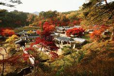 Autumn in Gyeongsangbuk-do