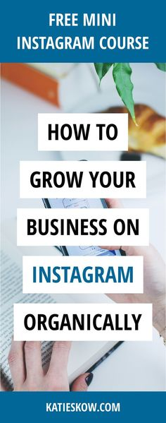 5 tips and ways to grow your business organically on Instagram - free training! > Create the Perfect Profile > Find + Appeal to Perfect Clients > Learn how to Effectively Engage with your Key Audience > Research the Best Hashtags for Your Business > Establish What Content Works Best > How to Ensure You're Always Consistent > Build A Sales Path from Cold Leads to Sizzling Clients
