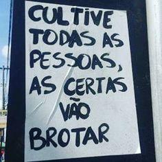 Bom dia, Mundão ...cultive, virão decepções, virão obviedades, virão surpresas!!! Vale muito #bomdia #frases #pensamentos #RioPreto #sp #Brasil