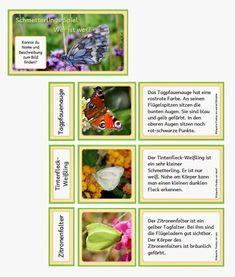 Ein Legespiel um Namen von Schmetterlingen kennen zu lernen. Es gibt ein Kärtchen mit dem Namen, ein Bildkärtchen und eine kurze Beschrei...