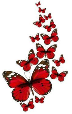 Find the desired and make your own gallery using pin. Papillon clipart cute butterfly outline - pin to your gallery. Explore what was found for the papillon clipart cute butterfly outline Butterfly Pictures, Red Butterfly, Butterfly Kisses, Butterfly Outline, Butterfly Sketch, Art Papillon, Butterfly Wallpaper, Paper Wallpaper, Decoupage Paper