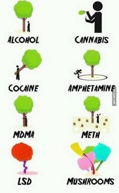 Free weed: drugs ain't funny   Moneyless.org