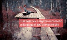 Ezek lesznek novemberben a legszerencsésebb csillagjegyek! Bottle Opener, Barware, November, November Born, Tumbler