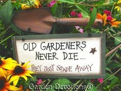 Funny Old Gardeners Never Die Wood Sign Shovel | eBay (now to find the broken shovels around here)