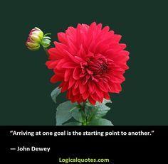 Inspirational John Dewey Quotes