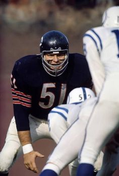 Dick Butkus of the Chicago Bears before a snap by the Baltimore Colts at Wrigley Field. Nfl Bears, Nfl Chicago Bears, Bears Football, Chicago Illinois, Football Usa, Cardinals Baseball, Nfl Football Players, Football Memes, School Football