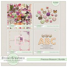 Precious Blossom | Bundle by Scrapyrus Designs This bundle contains: - 6 solid papers - 18 patterned papers - 73 elements - 2 sets of 26 alphabet letters - 5 page borders - 18 decorated brads and buttons   All items in this digital kit have been saved at 300 dpi for optimal print quality. Drop shadows for preview purposes only. For personal use and scrap for hire. Please read the TOU.
