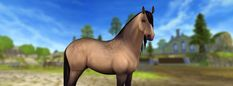 New horses and an exciting feature are coming up today! These elegant horses can be f. Star Stable Horses, Horse Star, Animals And Pets, Cute Animals, Horse Animation, Drawing Stars, Horses For Sale, Stars At Night, Show Jumping