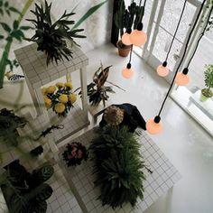 Aktipis Flowershop byPoint Supreme Architects