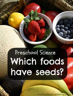 Finding seeds in foods-Preschool Science Inquiry. Seed or nutrition theme activity. Preschool Food, Preschool Garden, Preschool Science Activities, Nutrition Activities, Kindergarten Science, Science For Kids, Preschool Themes, Seeds Preschool, Science Projects