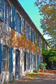 PROVENCE SAINT-RÉMY DE PROVENCE HOUSE COURTYARD AUTUMN OCTOBER