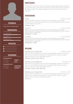 Online cv maken? Zo gedaan met onze app in 3 stappen. Gegevens invoeren, layout kiezen en downloaden.