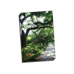 Picture It on Canvas 'Savannah Sidewalk II' 16-inch x 24-inch Wrapped Canvas