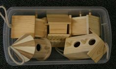 Provocation - Place birdhouses in the block area and see what the children do.