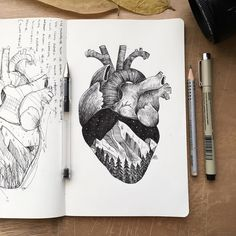 With tiny, precise pen strokes and careful cross-hatching, Italian artist Alfred Basha captures the complexity of natural life. His drawings interweave ani Mountain Drawing, Mountain Tattoo, Mountain Sketch, Anatomical Heart Drawing, Anatomical Heart Tattoos, Alfred Basha, Kalender Design, Arte Black, Cross Hatching