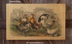 Our Barnyard Poultry Print on Coarse Woven Fabric