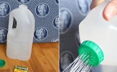 Net > Home decor trends for Years Great Pacific Garbage Patch, Urban Agriculture, Pet Bottle, Recycled Crafts, Watering Can, Home Decor Trends, Open House, Garden Plants, Recycling