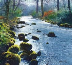 Silver River - Richard Thorn - watercolor