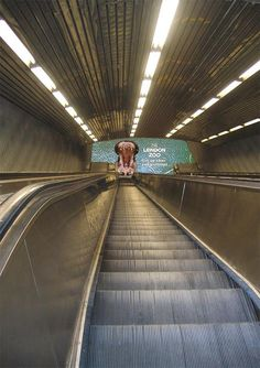 London Zoo | #public underground #print #sticker #floor #creative #viral #guerillamarketing #guerilla #btl #ambientmedia < repinned by www.BlickeDeeler.de | Follow us on www.facebook.com/blickedeeler
