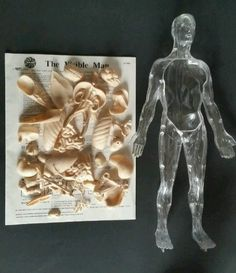 Use for replacement parts, education, play, diorama, art or display. THE VISIBLE MAN PLASTIC BODY MODEL. For parts only, not a complete kit. Comes with the parts that are in the photos. No box, original instructions included.