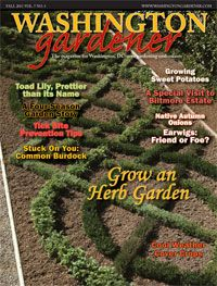 Kathy Jantz's Washington Gardener Blog