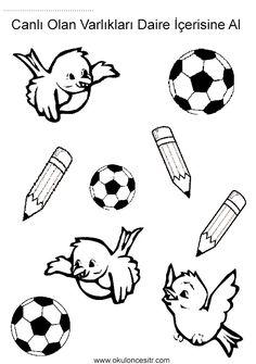 Canlı cansız kavramı çalışma etkinliği sayfaları ve kuş kalem, futbol topu canlı cansız zıt kavramlar çalışma sayfası etkinlikleri örnekleri kağıdı indirme, çıktı alıp yazdırma. Free live inanimate worksheets download printable.