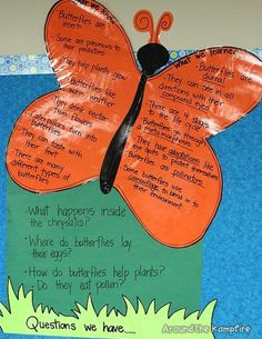Butterfly Life Cycle KWL chart