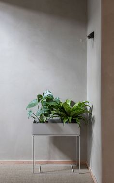 Layers of clay line the walls of this apartment, which has been overhauled by Simon Astridge to include a bathing area with smoked-oak panels Decor, Living Wall, Interior, Oak Panels, Green Plants, Plant Box, House Interior, Clay Houses, Modern Cupboard