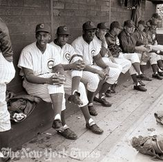 Chicago Cubs Spring Training - 1962