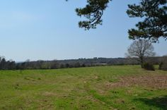 AWESOME PROPERTY WITH EVERYTHING YOU COULD ASK FOR!! These are 72 acres m/l in Bethesda that is level, has 2 solid ponds and great views from the east side overlooking the Bethesda Agricultural Experiment Station. To the west is the a view of the mountain on the Stone county side of the river. The property is a 40 piece and a 32.56 piece that are connected. The 40 has been used for hay production and the 32 has been grazed for the past few years. There are several building sites in…