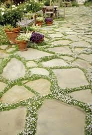 crazy paving with grass - Google Search