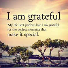 I am grateful: My life isn't perfect, but I am grateful for the perfect moments that make it special. Im Grateful, Thankful, Love Me Quotes, Life Quotes, Qoutes, Quotable Quotes, Happy Quotes, Excited About Life, Spirit Science