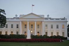 U.S. deputy national security adviser for strategy Nadia Schadlow resigned from her position at the White House.