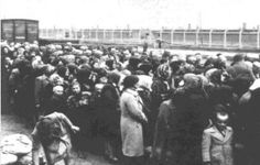 Jewish women and children waiting for a selection at the ramp in Birkenau for either immediate death by gas or slave labor